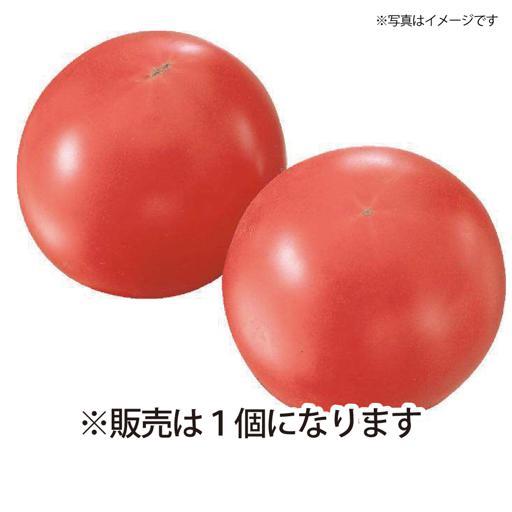 北海道産等 トマト